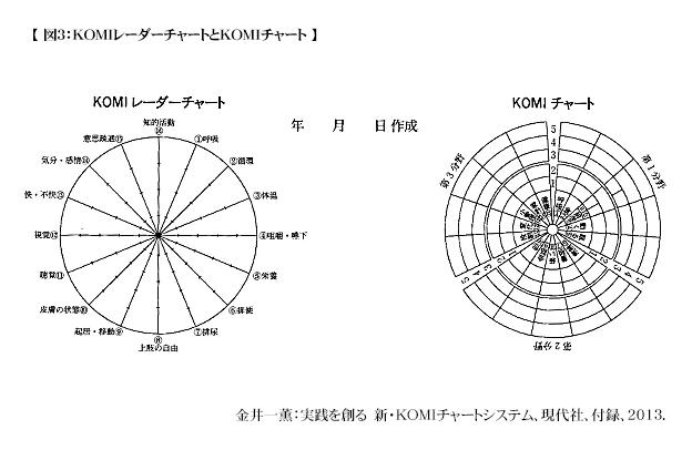 komi-care-chart-system